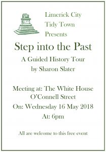 tidy towns tour